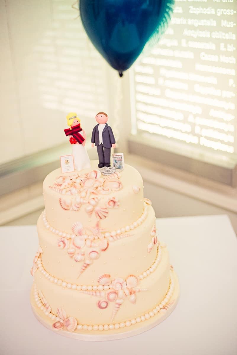 wedding photographer dorset wedding cake