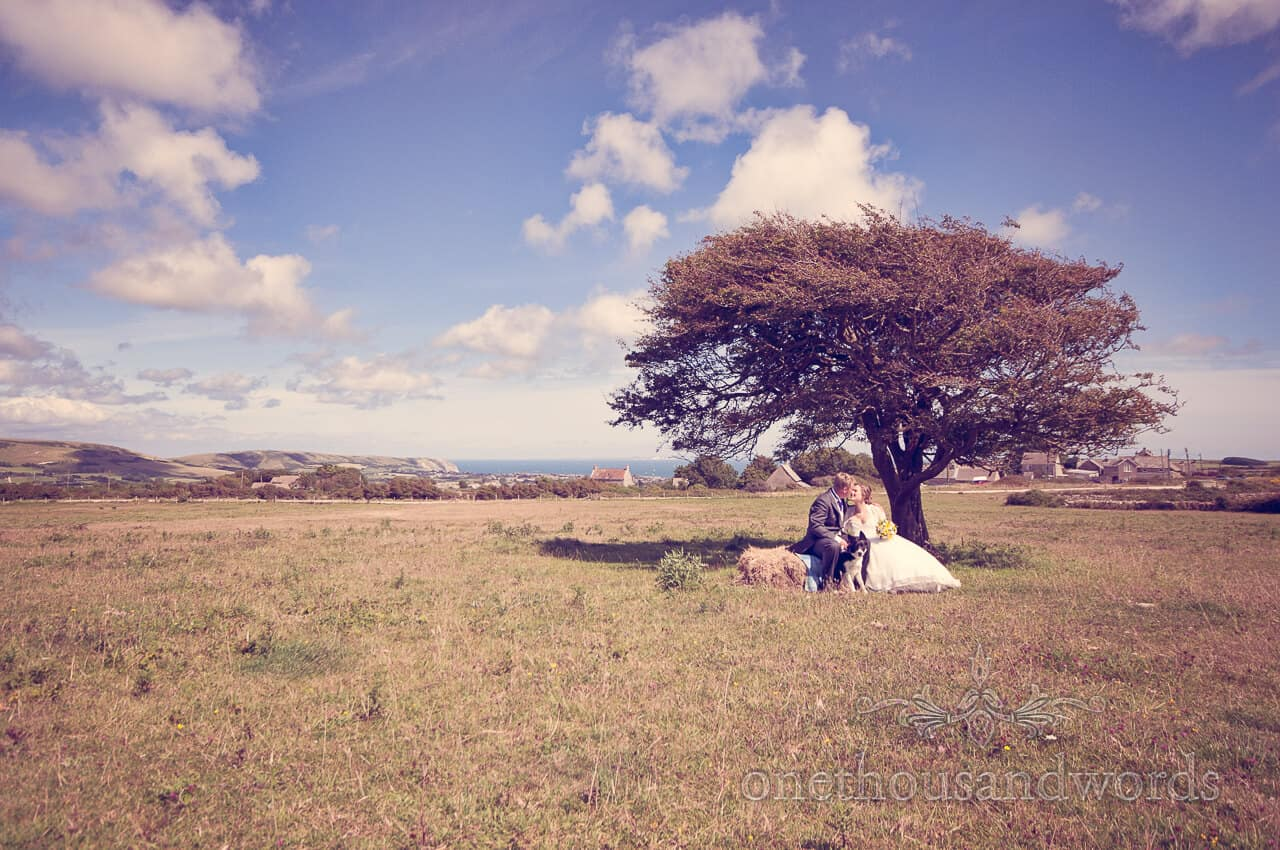 Countryside wedding photographs under a tree with straw bales