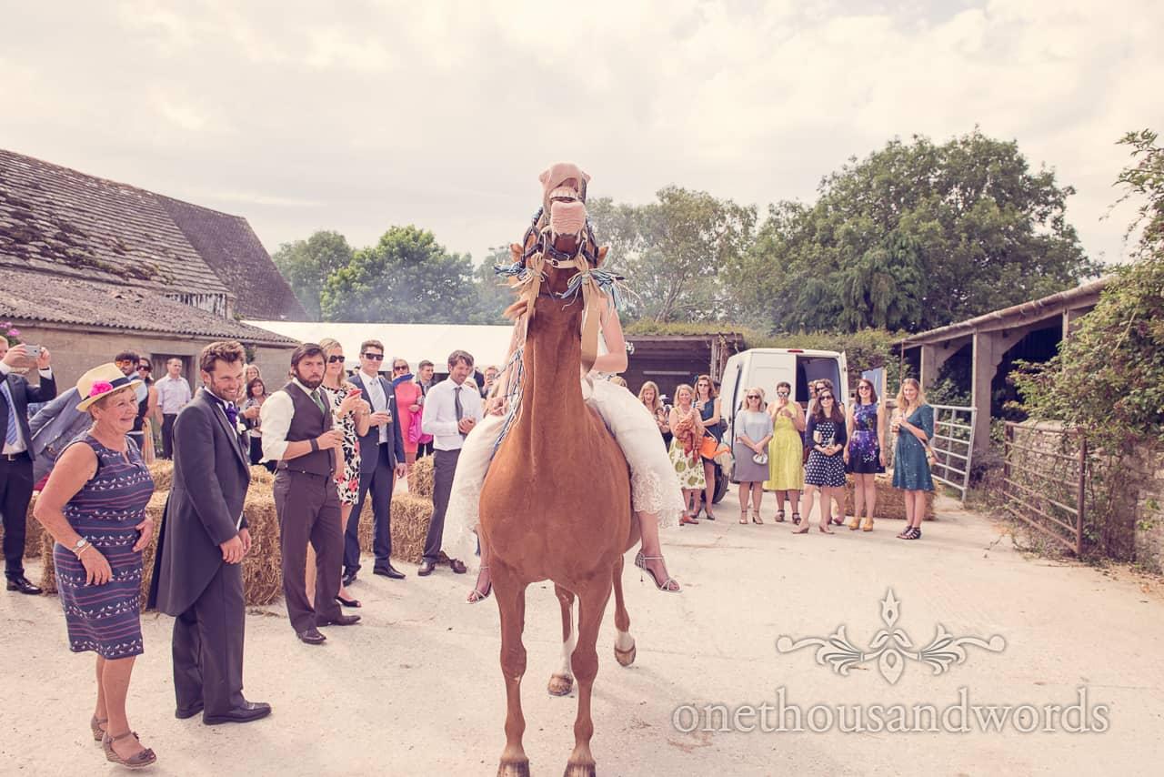 Horse Laughs at Barn Wedding in Dorset