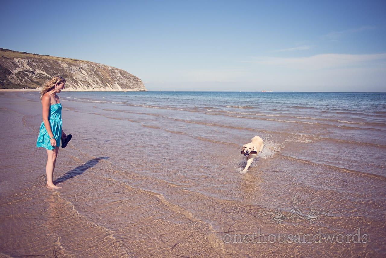 swanage beach engagement photographs dog on the beach