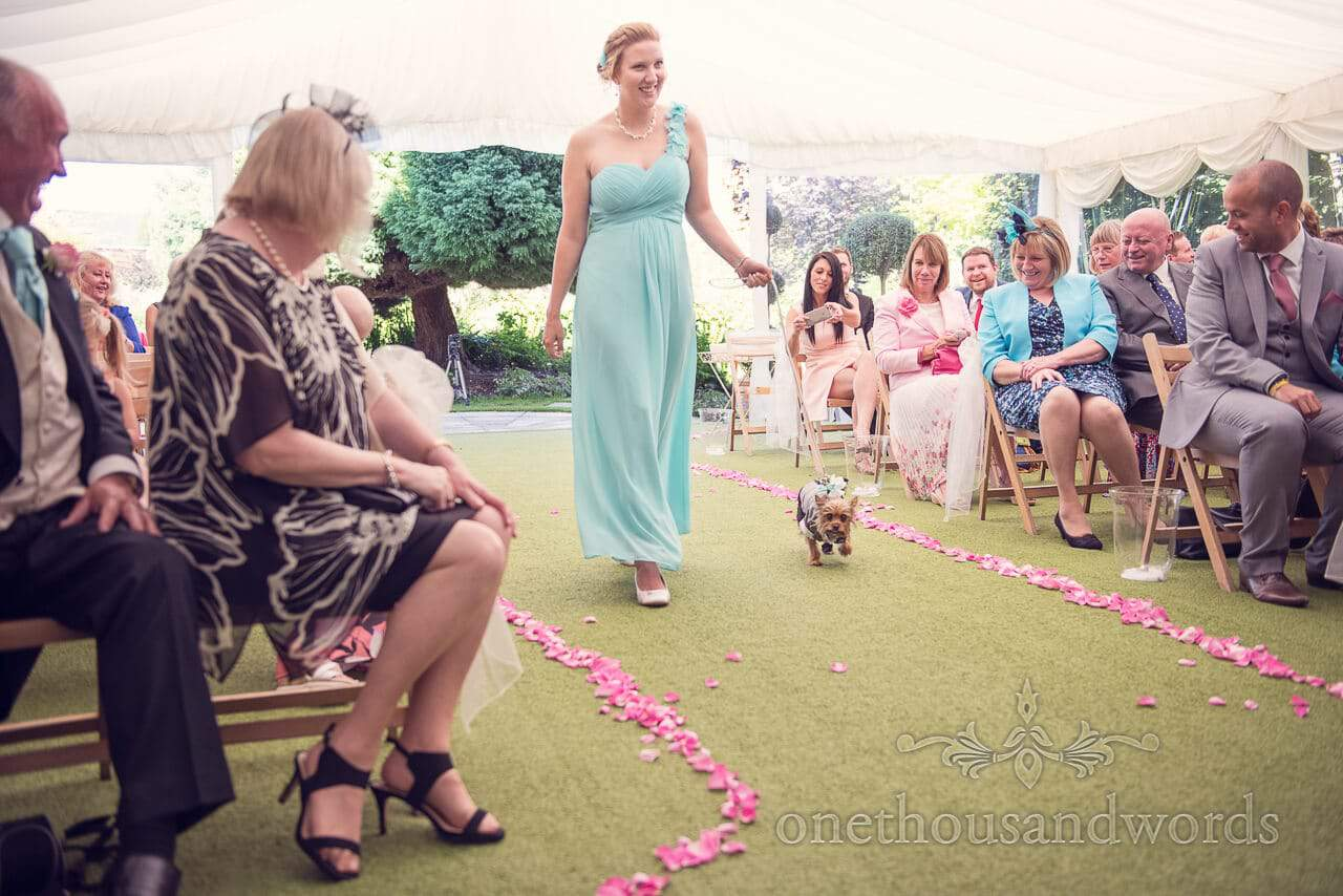 Ring bearing dog Parley Manor Wedding