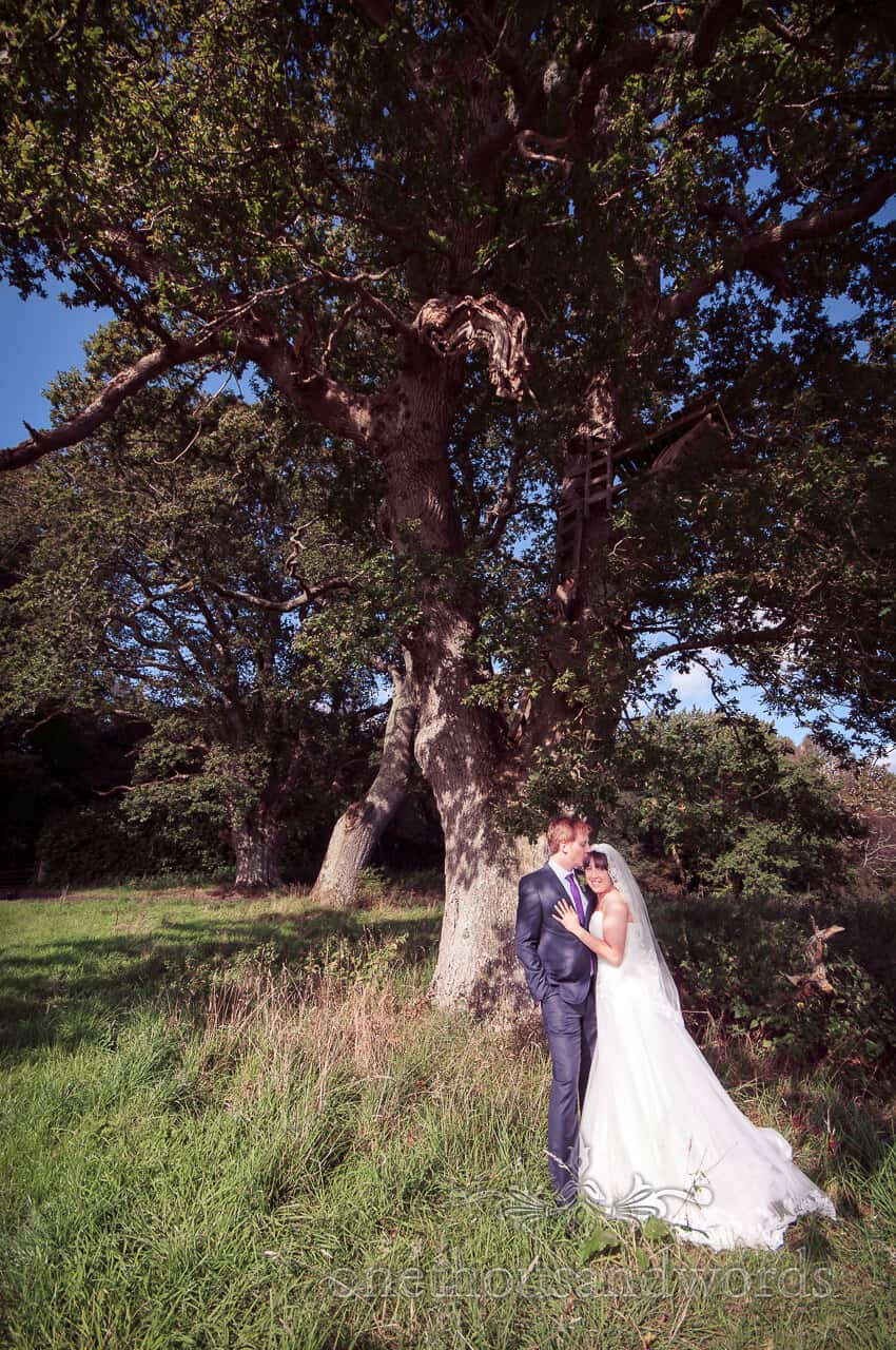 weddings in the wood photographs - Bride and groom with tree house
