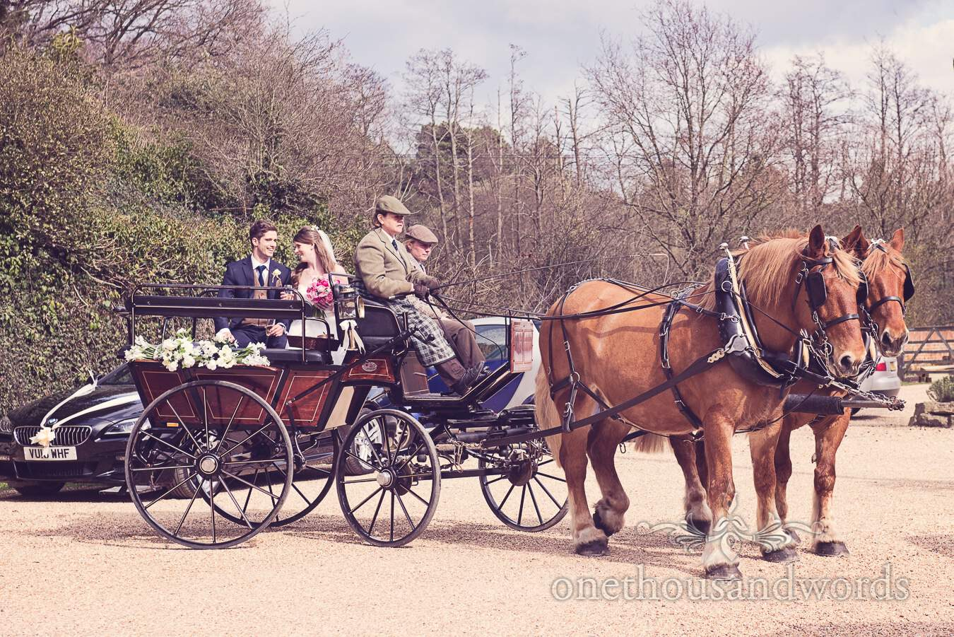Newlyweds arrive in carriage from wedding at Sopley Mill