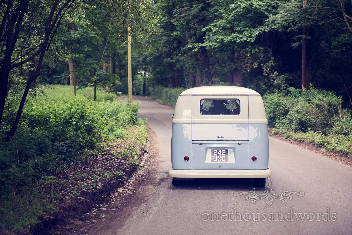 Blue Split Screen VW wedding campervan drives through woodland in Dorset