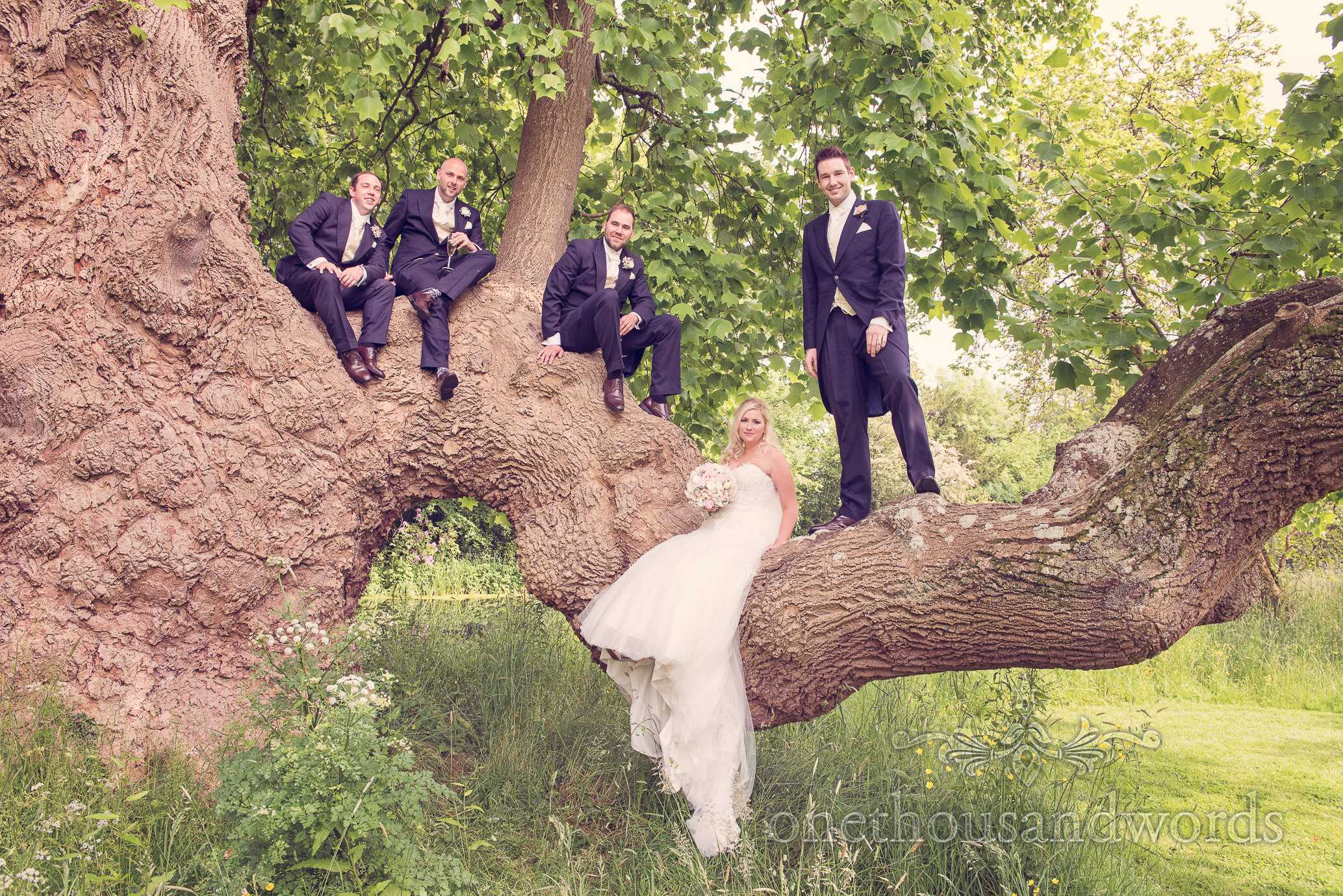 Bride, groom and groomsmen in a tree at Deans Court Wedding venue