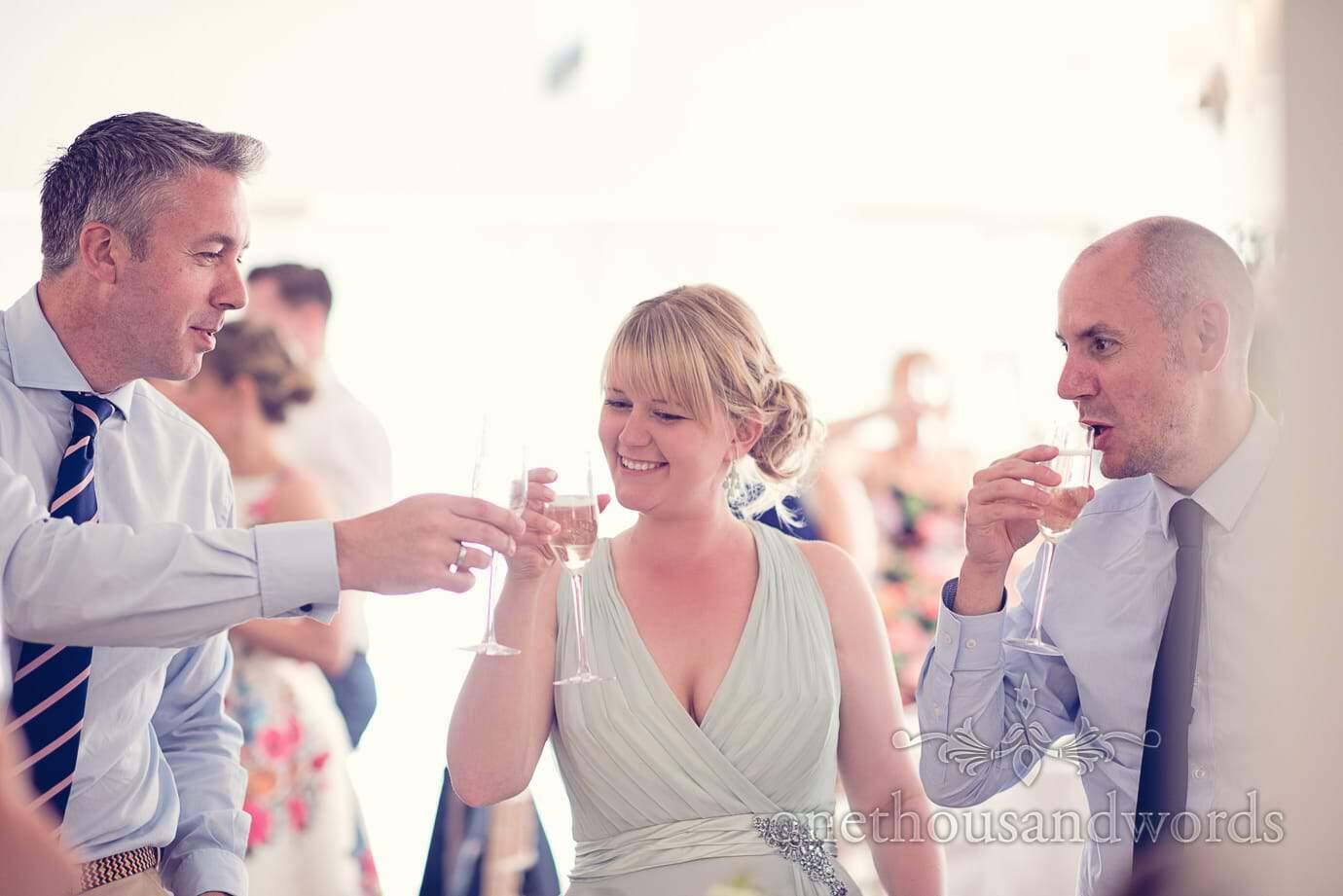 Toast at Italian Villa Wedding Photographs