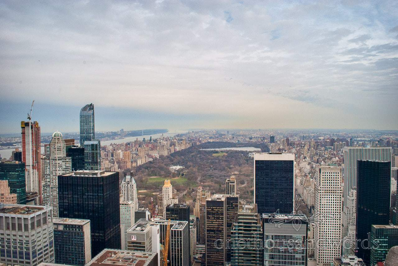 Central park from top of the rock - New York City marriage proposal Photographs