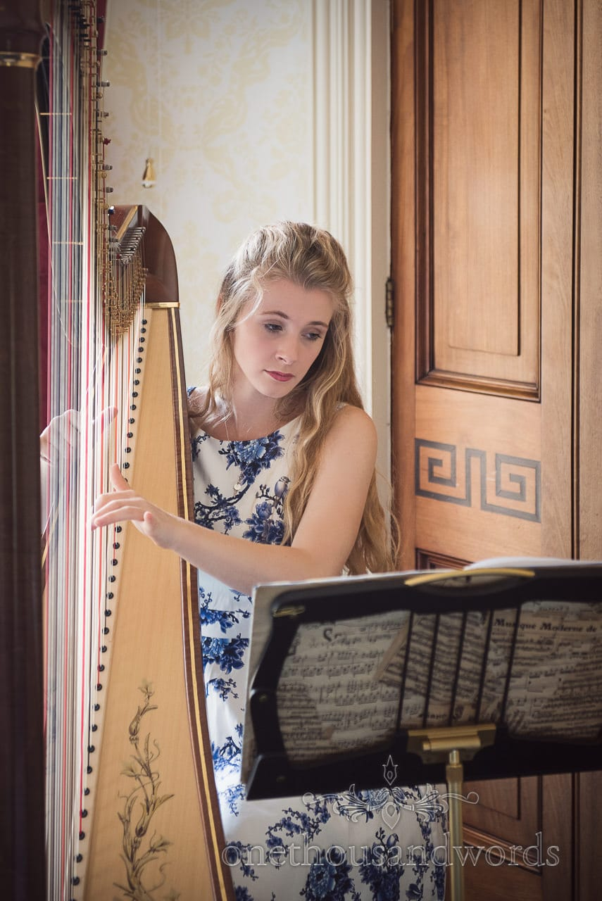 Emily Rowell wedding harpist at Upton House wedding ceremony in Dorset