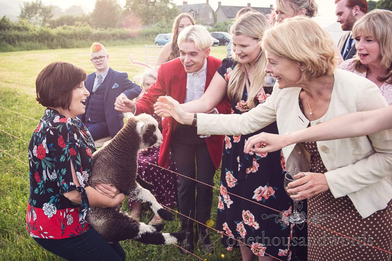 Countryside Wedding Photos of guests greeting winner of the sheep racing at farm