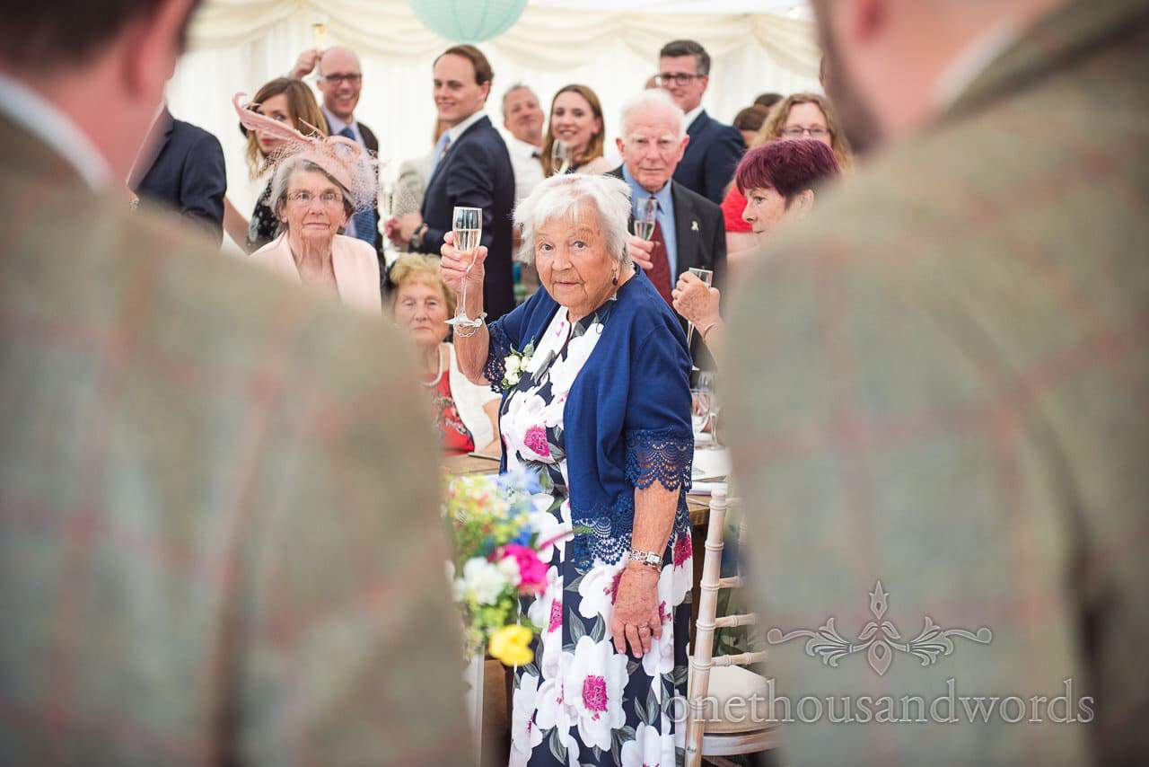 Countryside Wedding Photos of guests raising a toast at marquee reception