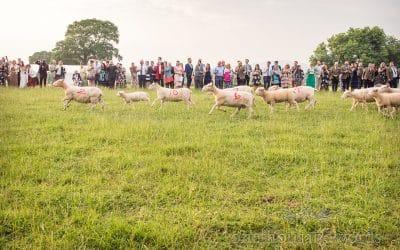 Countryside Wedding Photos at Hannah and Mark's Dorset Farm Wedding