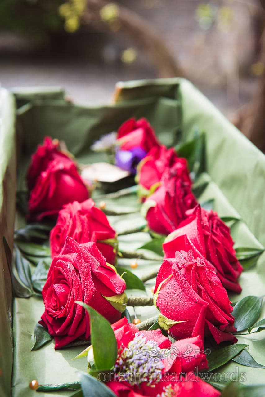 Groomsmens red rose buttonholes for Chocolate Themed Wedding Photographs