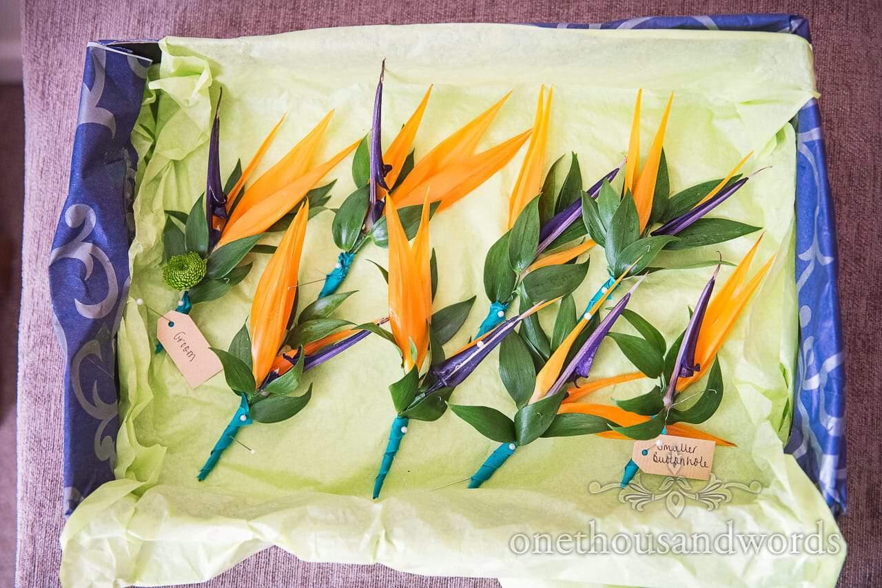 Strelitzia bird of paradise flower buttonholes from RNLI College Wedding Photographs