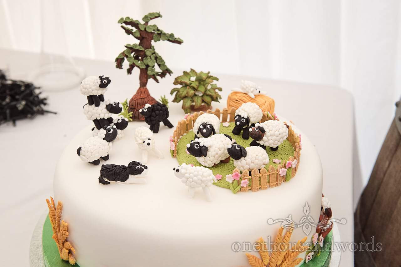 Farm marquee wedding photos of hand made detailed farmer theme wedding cake