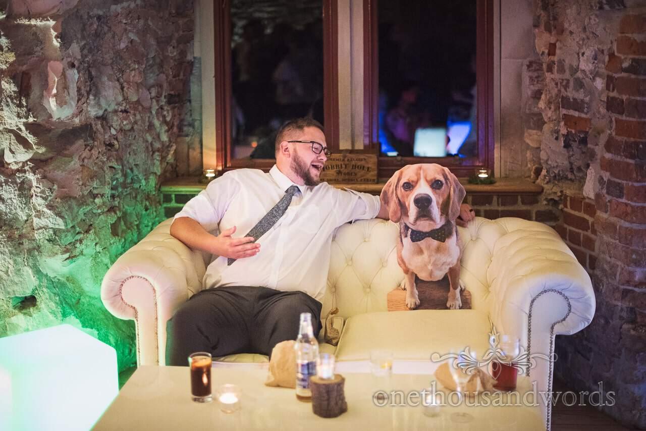Lulworth Castle Wedding evening guest talks to beagle dog on sofa