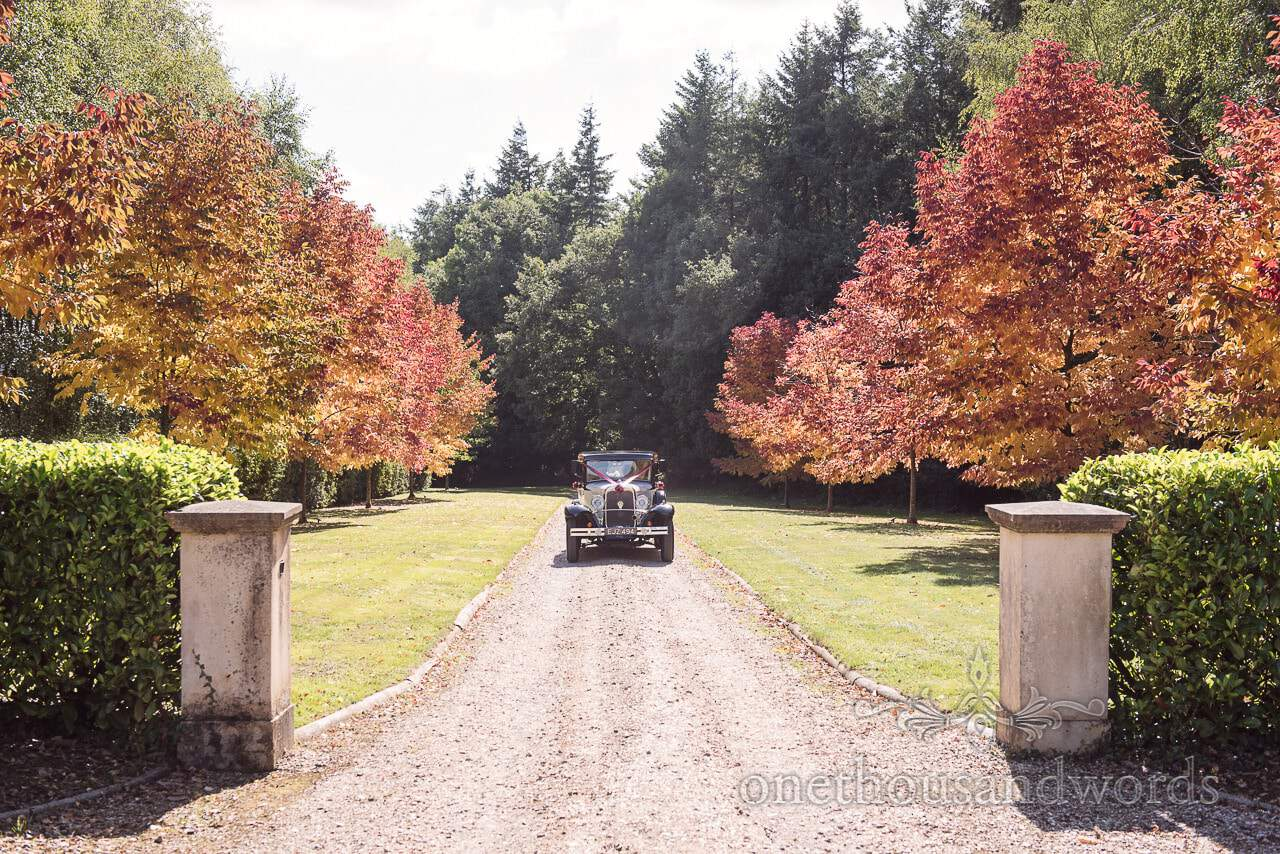 Wedding car on Hethfelton House Wedding driveway with red trees