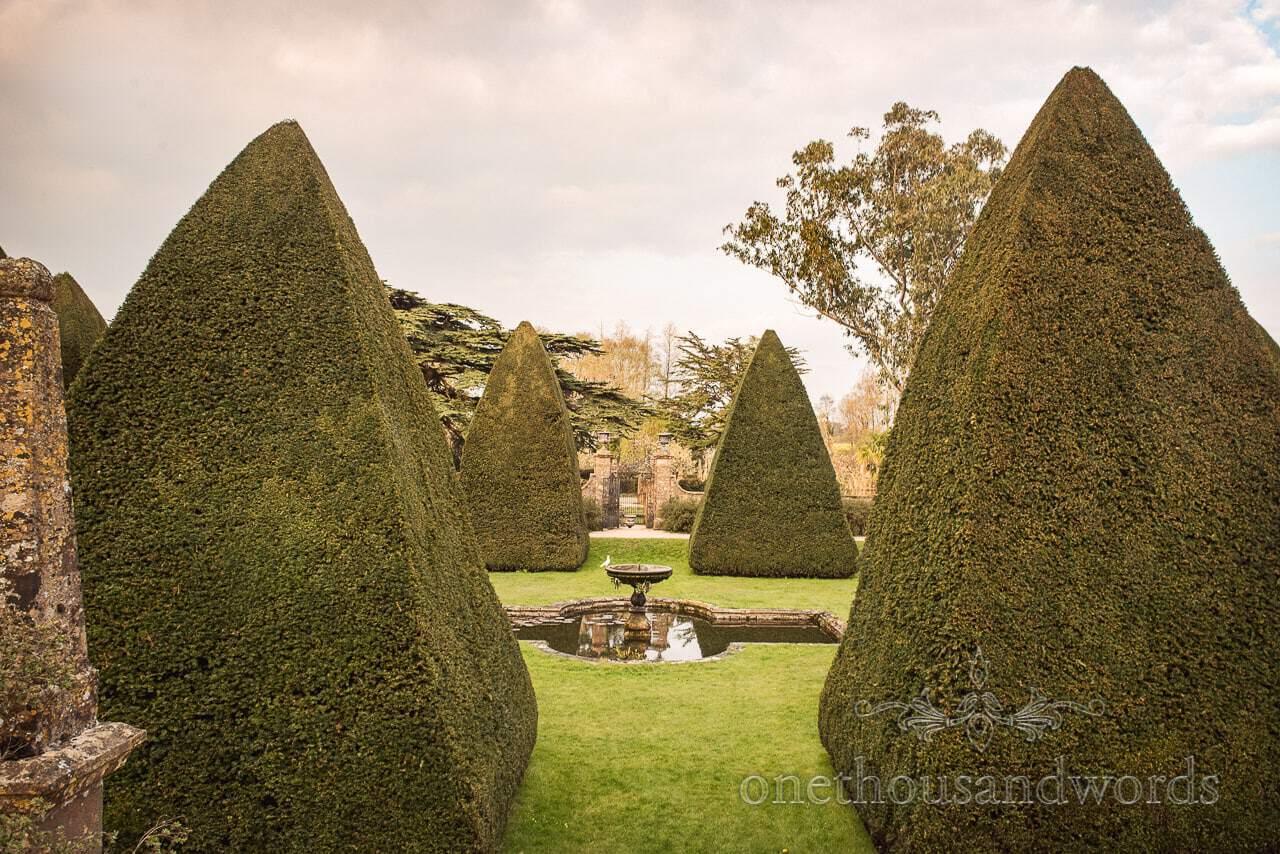Athelhampton House famous yew tree topiary pyramids with white dove on fountain