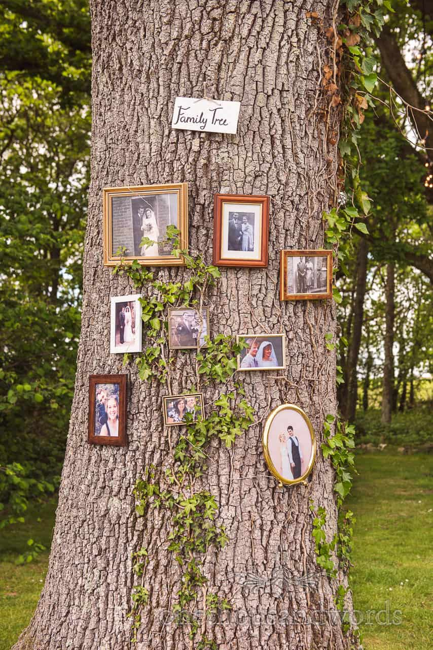 Family Tree Framed Family Photographs at Sopley Lake Wedding Reception Photo by one thousand words photographers
