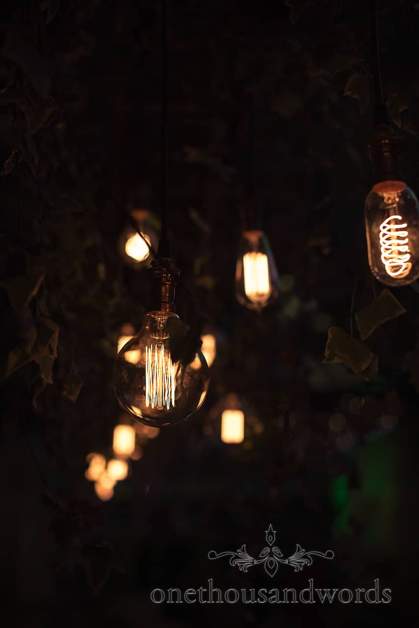 Edison bulbs hanging from ivy covered ladder wedding decoration idea close up detail wedding photograph inspiration