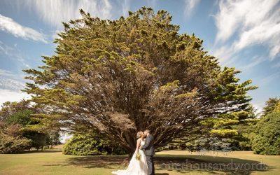 Sarah & Ryan's Studland Bay House Wedding Photographs Review