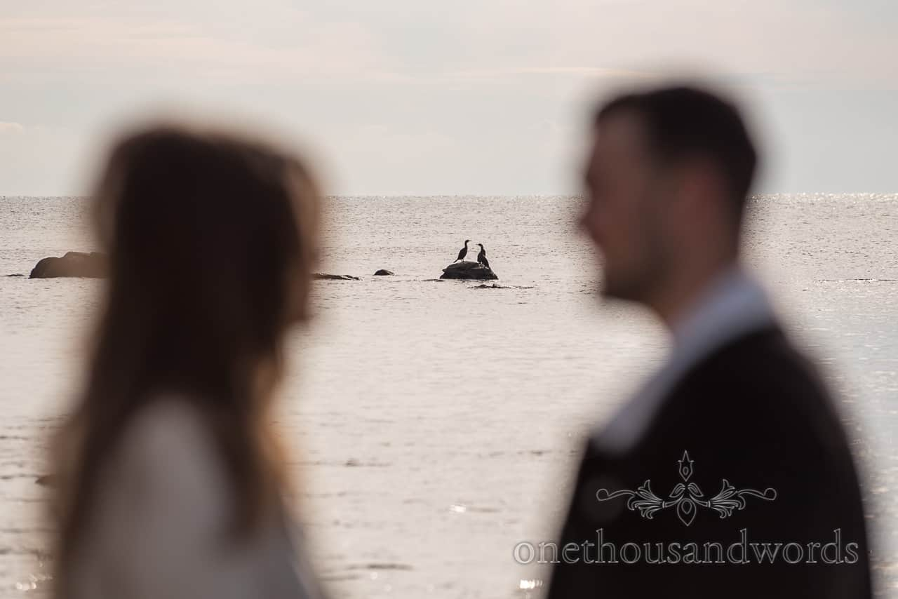 Sea birds copying fiance couple at Dorset seaside engagement photographs by one thousand words wedding photography