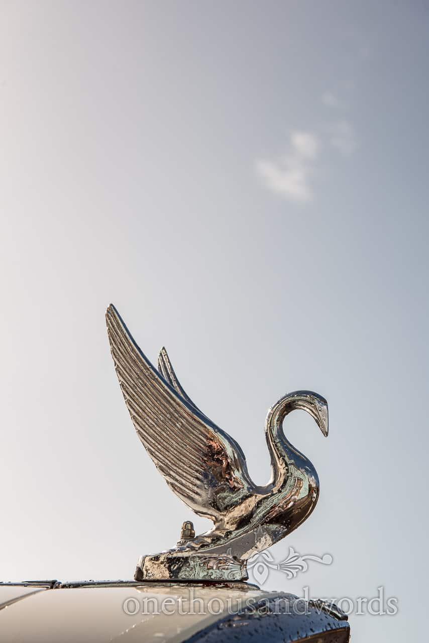Classic wedding car swan hood ornament from Lulworth wedding