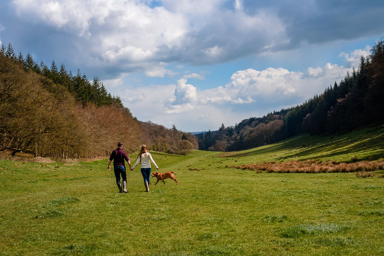 Hand in hand couple walk through Stourhead estate valley with pet dog