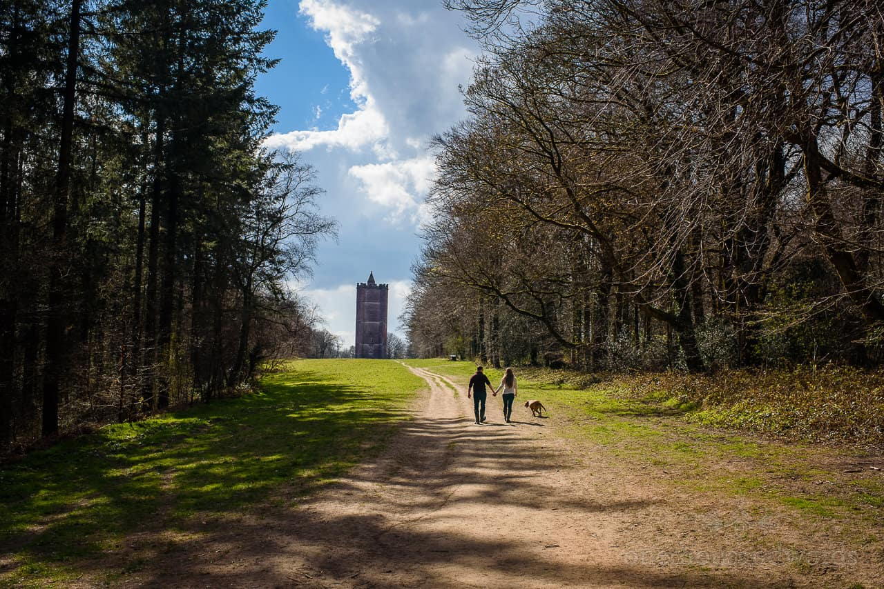King Alfred's Tower engagement photos of couple walking hand in hand with pet dog