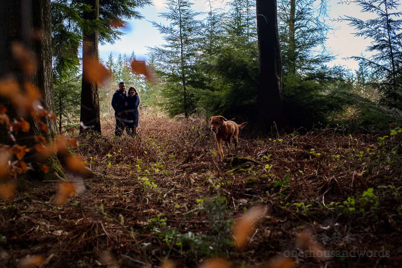Engagement photo shoot couple stand in woodland shadows whilst dog runs around in foreground