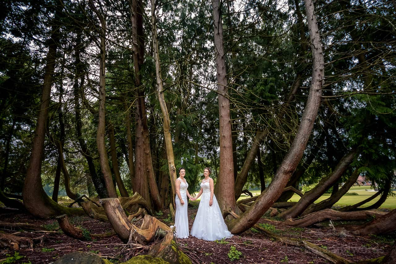 Bride in white wedding dresses in large trees at Oakley Hall grounds